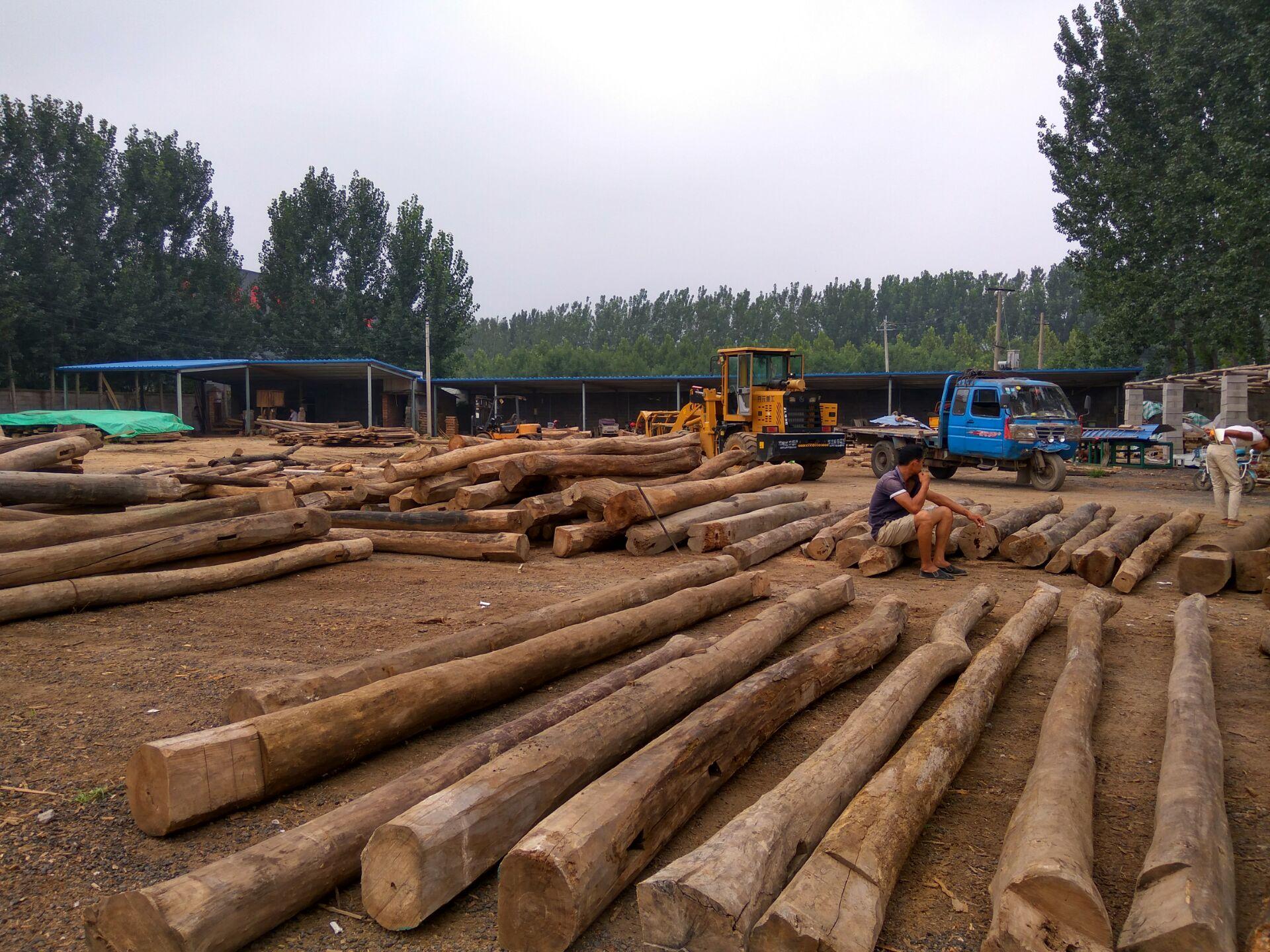 百年老榆木价格板材价格