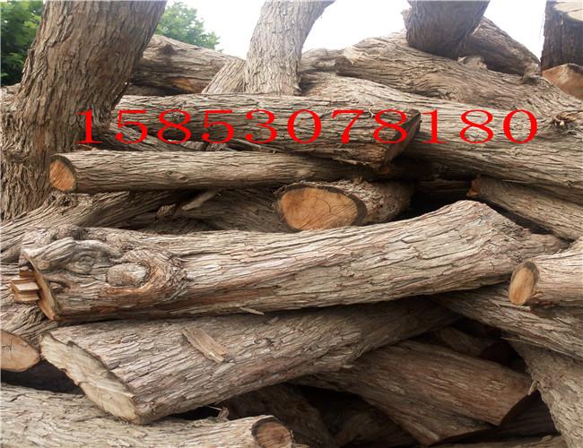 大连优质枣木原木通货价格