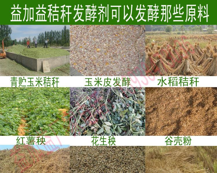 玉米样品前处理方法 步骤